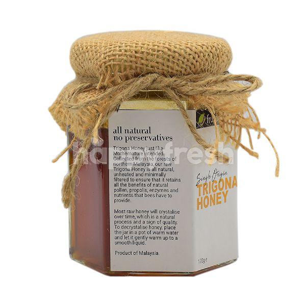 Product: Frutara Pure Trigona Honey - Image 3