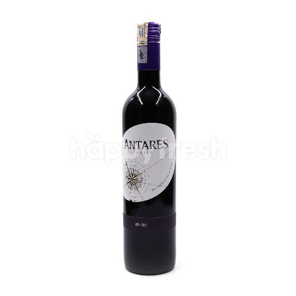 Product: Antares Chile Merlot Red Wine - Image 1