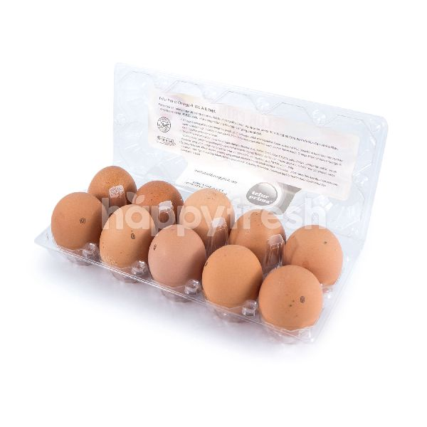 Product: Telur Prima Chicken Egg with Omega 9 Vitamin A and DHA - Image 2