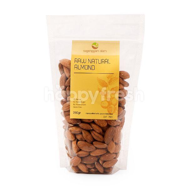 Product: Segenggam Alam Gluten Free Raw Natural Almond - Image 1