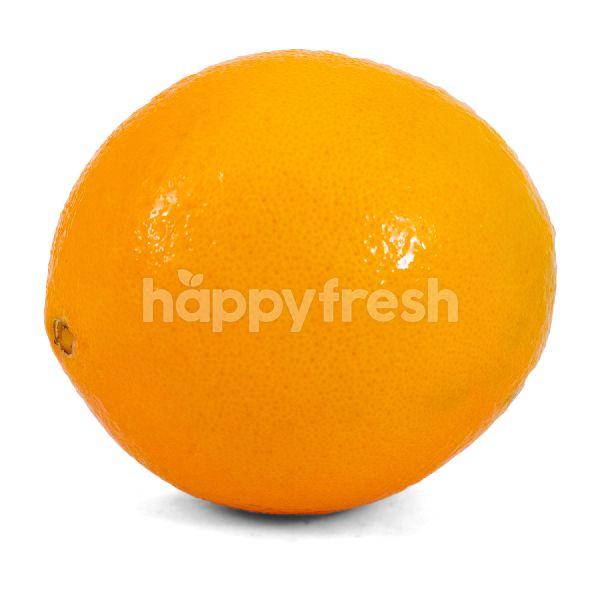 Product: Navel Sunkist Orange - Image 1