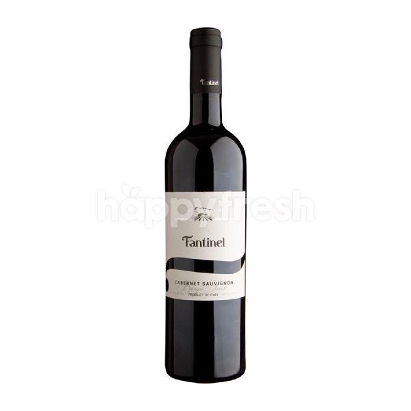 Product: Fantinel Borgo Tesis Cabernet Sauvignon - Image 1