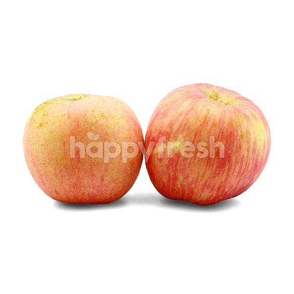 Product: China Fuji Apple (XL) - Image 1