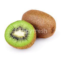 Kiwi Jumbo