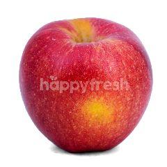 Apple Envy