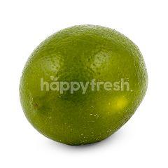 Lemon Lokal Super