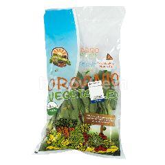 Organic Land Pack Choy Hijau