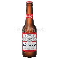 Budweiser King Of Beer Lager