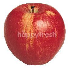 US Royal Gala Apple (4 Pieces)
