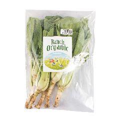 99 Organic Pakchoy