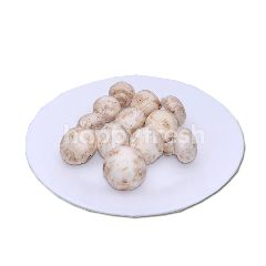 FreshBox Jamur Champignon