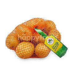 First Pick Australia Chat Potato