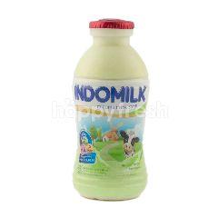 Indomilk Susu Steril Rasa Melon
