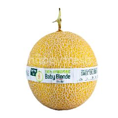 Eat Me Melon Blonde Baby