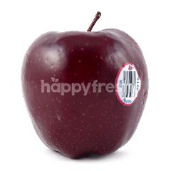 Apel Red Delicious USA Besar