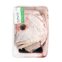 Kepala Ikan Kakap