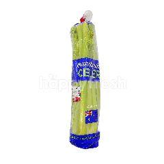 Australia Celery (Saderi)