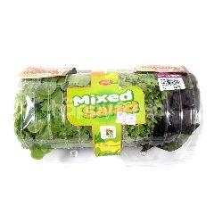 Amazing Farm Salat Campur