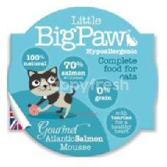 Little Big Paw (Cat) Pot Gourmet Atlantic Salmon (Hypo) 85g