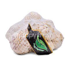 Fres Partner Garlic