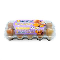 Nutriplus Clean Fresh Eggs (10 Eggs)