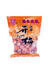 Chen's Chen's Manisan Buah Plum Kai Xin Mei