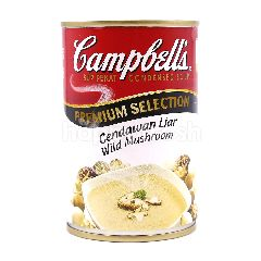 Campbell Wild Mushroom Condensed Soup