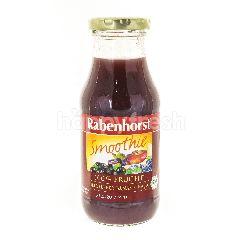 Rabenhorst Heidelbeer-Banana-Acai Juice