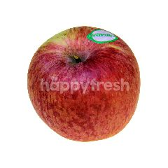 New Zealand Beauty Apple (8s Pieces)