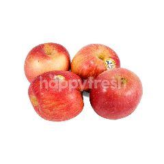 Organic Mix Apples (4 Pieces)