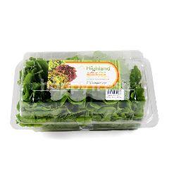 Highland Salanova Oakleaf Green Lettuce
