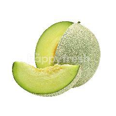 Hope Melon Jepang