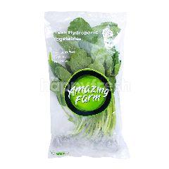 Amazing Farm Parung Farm