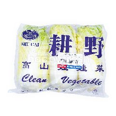 RRT Chinese Cabbage