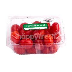 Farm Harvest Tomat Anggur Cherry Lokal