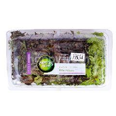 Amazing Farm Salanova Frisee Mix