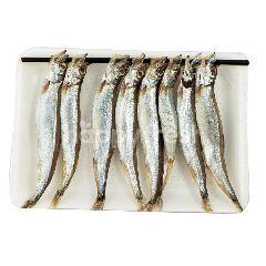 Komochi Ikan Shishamo L