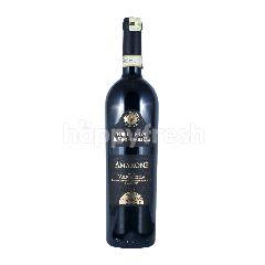Bottega Il Vino Degli Dei Amarone Della Valpolicella DOCG