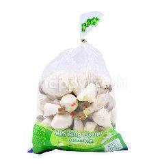 Mini Korean Oyster Mushroom
