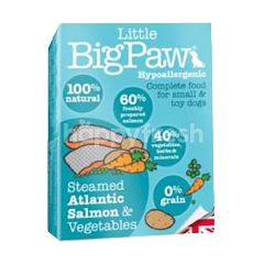 Little Big Paw Steamed Atlantic Salmon & Vegetable (Hypo)150g