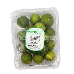 Edsam Small Lime (Limau Nipis) ~200g
