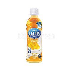 Calpis Cultured Milk Mango Drink