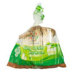 Greenco Jamur King Oyster
