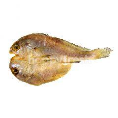 Salted Red Bream Split (Ikan Masin Gelama Belah)
