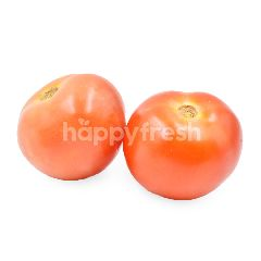 Medium Size Tomato
