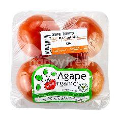 AGAPE ORGANIC Organic Tomatoes