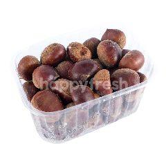 Kacang Kastanye Korea