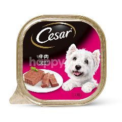 Cesar Dog Food Adult Beef 100G Dog Wet Food