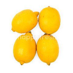 Lemon Premium Impor