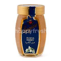 Langnese Acacia Madu